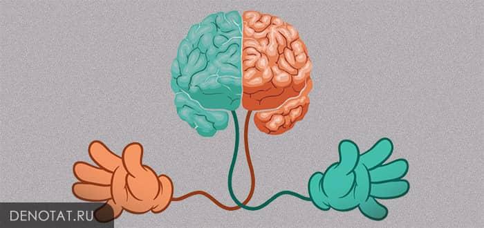 Рациональное мышление – это путь к верному решению